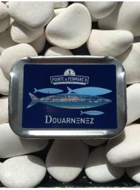1/6 sardine olive Élégante Douarnenez