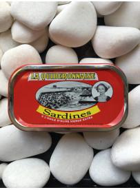 1/10 sardine olive